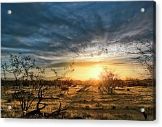 March Sunrise Acrylic Print