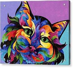 Mardi Gras Cat Acrylic Print by Sherry Shipley