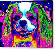 Mardi Gras Dog Acrylic Print