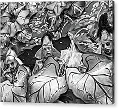 Mardi Gras Float - Bw Acrylic Print by Steve Harrington
