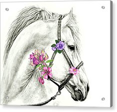 Mare With Flowers Acrylic Print by Heidi Kriel