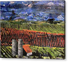 Acrylic Print featuring the mixed media Marianne's Vineyard by Lisa McKinney