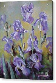 Maria's Irises Acrylic Print