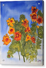 Acrylic Print featuring the painting Marigolds by Sandy McIntire