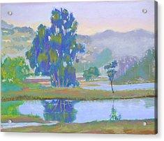 Marin Lagoon Acrylic Print by Dan Scannell