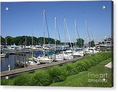 Marina On Black River Acrylic Print