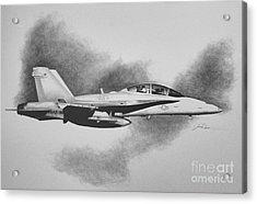 Marine Hornet Acrylic Print by Stephen Roberson