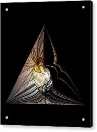Acrylic Print featuring the photograph Marine Life Abstrat 7 by Irma BACKELANT GALLERIES