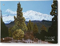 Marion Mountain In Winter Acrylic Print by Jiji Lee
