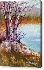 Acrylic Print featuring the painting Mari's Birches by Kris Parins