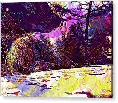 Marmot Groundhog Rodent Mammal  Acrylic Print