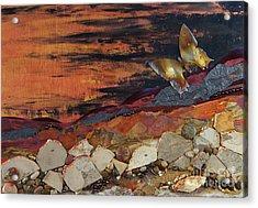 Mars Butterfly Effect Acrylic Print
