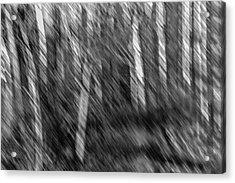 Marsh Abstract Acrylic Print by Thomas Young