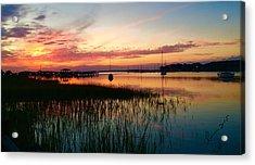 Marsh Landing  Acrylic Print