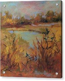 Marsh Memories Acrylic Print