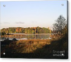 Marsh Morning Acrylic Print by Mendy Pedersen