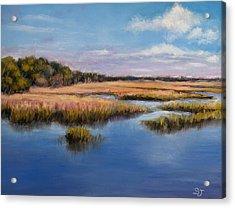 Marshland In Florida Acrylic Print