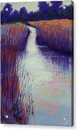 Marshy Reeds Acrylic Print
