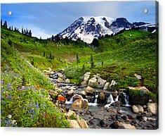 Martha Creek Wildflowers Acrylic Print by Mike  Dawson