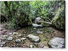 Martinet Creek In Aiguafreda Catalonia Acrylic Print
