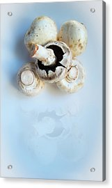 Marvellous Mushrooms Acrylic Print