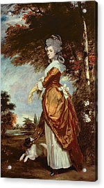 Mary Amelia First Marchioness Of Salisbury Acrylic Print by Sir Joshua Reynolds