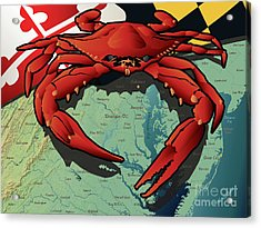 Maryland Red Crab Acrylic Print