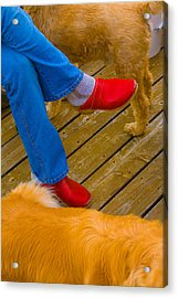 Marys Red Shoes Acrylic Print by John Toxey