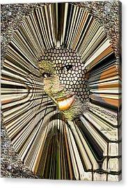 Masquerade Acrylic Print by LeeAnn Alexander