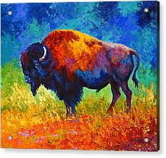 Master Of His Herd Acrylic Print by Marion Rose