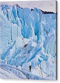 Matanuska Glacier Alaska Hiking Acrylic Print by Sam Amato