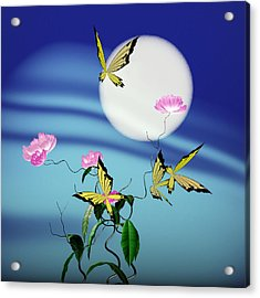 Math Peony And Butterfly Acrylic Print