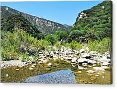 Acrylic Print featuring the photograph Matilija Hot Springs by Kyle Hanson