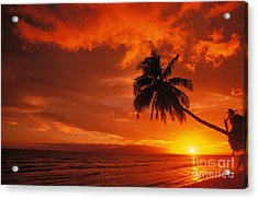 Maui, A Beautiful Sunset Acrylic Print by Ron Dahlquist - Printscapes