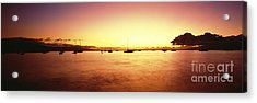 Maui Boat Harbor Silhouette Acrylic Print by Carl Shaneff - Printscapes