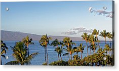 Acrylic Print featuring the photograph Maui Palms by Lars Lentz