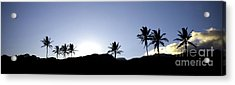 Maui Sunset Palm Tree Silhouettes Acrylic Print by Denis Dore
