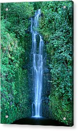 Maui Waterfall Acrylic Print by Bill Brennan - Printscapes