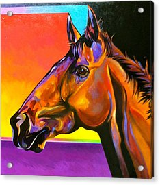 Maurice Acrylic Print by Bob Coonts