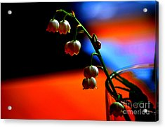 Acrylic Print featuring the photograph May Flowers by Susanne Van Hulst