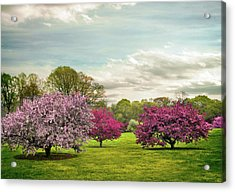 Acrylic Print featuring the photograph May Meadow by Jessica Jenney