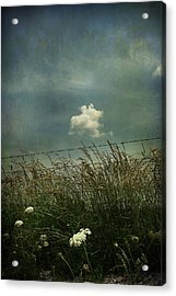Maybe Someday I'll Float Above Acrylic Print by Laurie Search