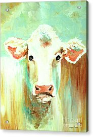 Maybell The Cow Acrylic Print