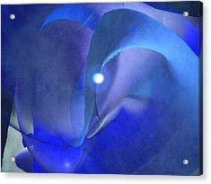 Maze Blue Acrylic Print