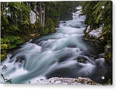 Acrylic Print featuring the photograph Mckenzie River by Cat Connor
