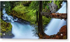 Acrylic Print featuring the photograph Mckenzie River From Sahalie Falls by Cat Connor