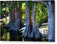 Mckinney Falls State Park - Texas 12118-2 Acrylic Print