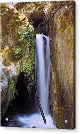 Mcway Creek Falls 2 Acrylic Print