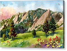 Meadow At Chautauqua Acrylic Print