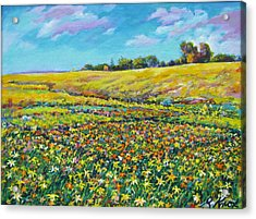 Meadow Of The Quilted Lilies Acrylic Print by Richard Knox
